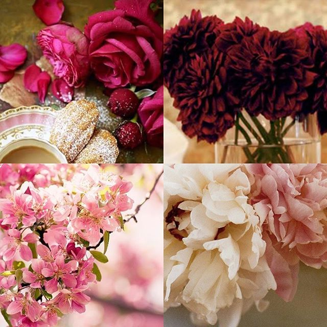 Pick your Pink. Colors of love for #valentineday #pink #roses #dahlias #cherryblossom #peonies #pacificheightsplace #joinus