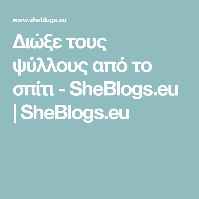 Διώξε τους ψύλλους από το σπίτι - SheBlogs.eu | SheBlogs.eu