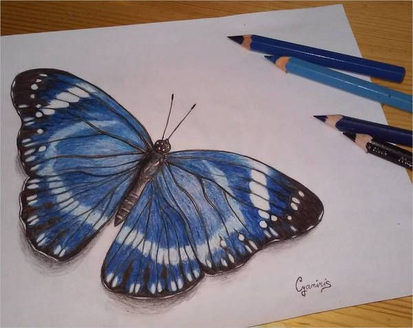 25+ Best Ideas About Butterfly Drawing On Pinterest