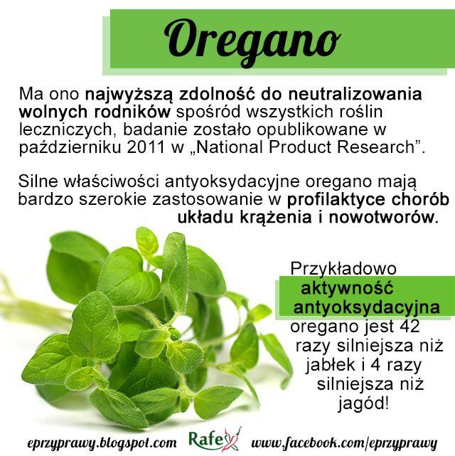 Blog o zdrowym i naturalnym odżywianiu, ziołach, przyprawach i roślinach.: OREGANO - właściwości lecznicze i zastosowanie