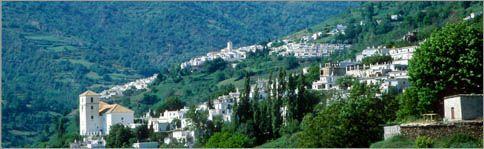 A unique holiday experience www.flamencolafuente.com