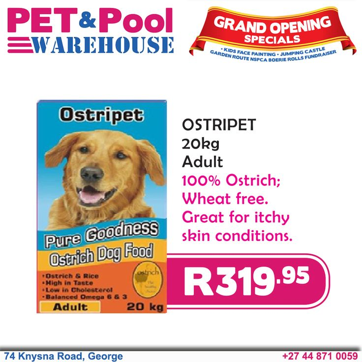 grand opening specials just for you montego adult dog food 25kg only r285 95 pet pool george grand opening specials pinterest grand opening