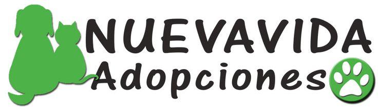 Perros en adopción de Nueva-vida adopciones  ...