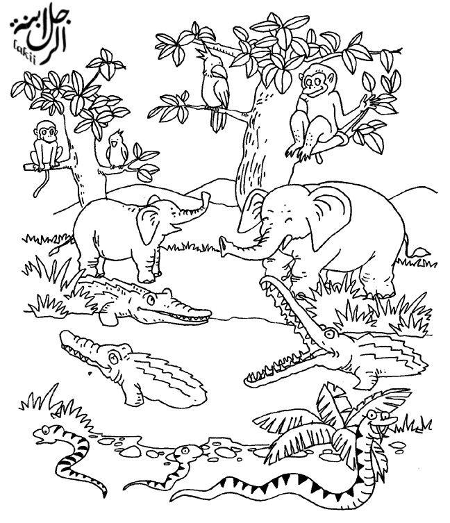 صور رسومات كرتون للتلوين للأطفال للطباعة لتعليم التلوين ميكساتك Mercury Facts For Kids Drawings Facts For Kids