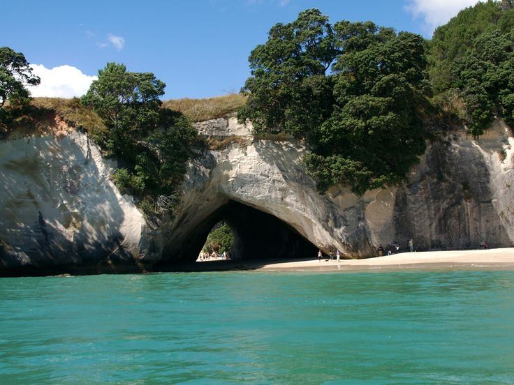 One of the most gorgeous places I've ever been! Cathedral Cove - Whitianga New Zealand