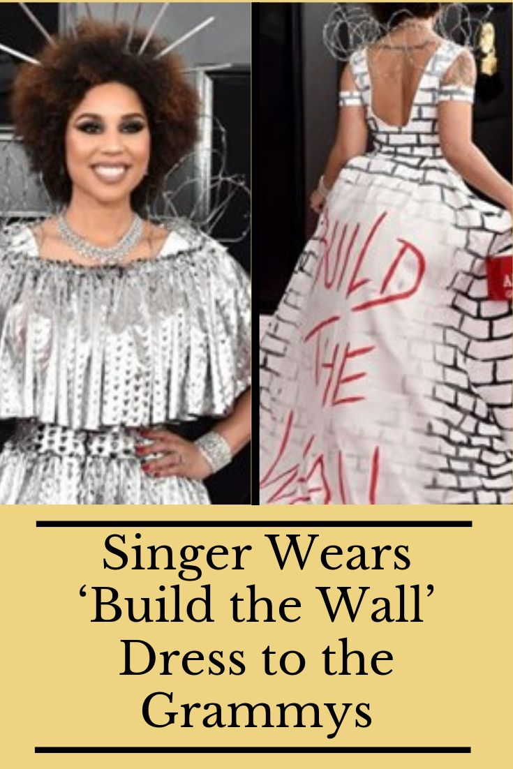 Singer Wears 'Build the Wall' Dress to the Grammys