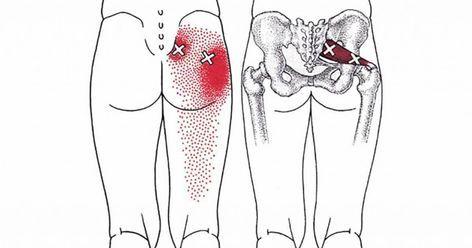 7 strækøvelser som lindrer ryg- og nervesmerter på ingen tid. Newsner giver dig de nyheder som virkelig betyder noget for dig!