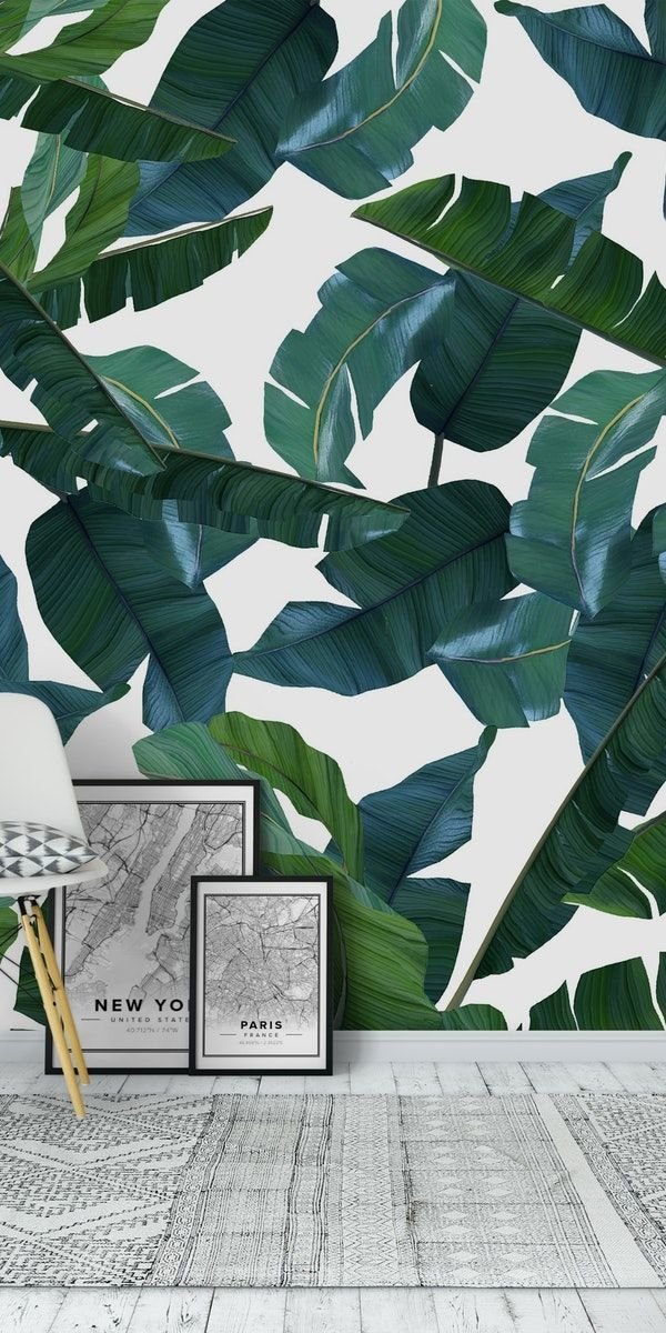 Banana Leaf Decor Wallpaper Banana Leaf Decor Leaf Decor Wall Leaf Decor