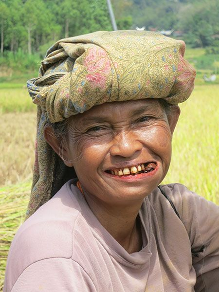 Pruimtabak op Zuid-Sulawesi