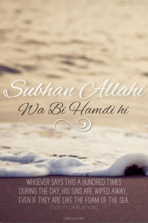 SubhanAllahi wa biHamdihi (Glory be to Allah and Praise Him). Whoever says (the above) a hundred times during the day, his sins are wiped away, even if they are like the foam of the sea. - www.lionofAllah.com
