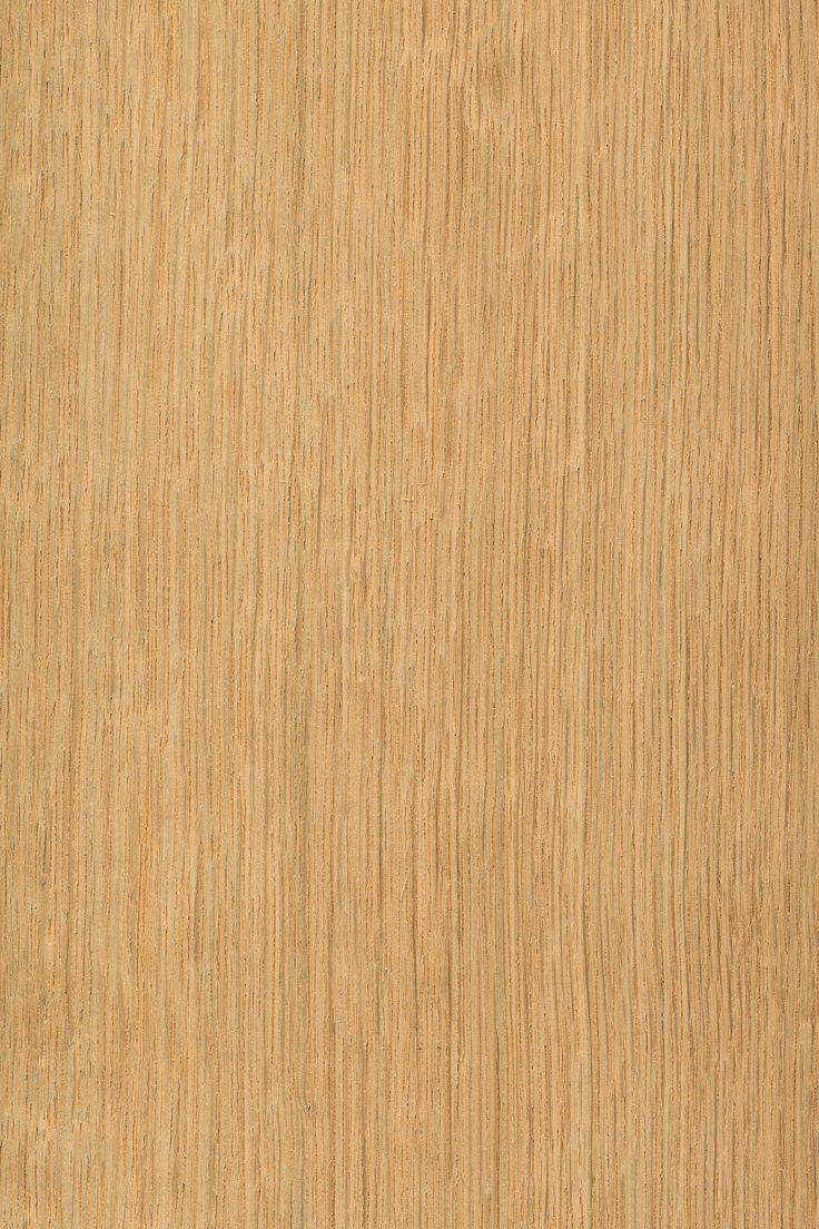 Eiche schlicht | Furnier: Holzart, Eiche, Blatt, hell, braun, Laubholz #Holzarten #Furniere #Holz