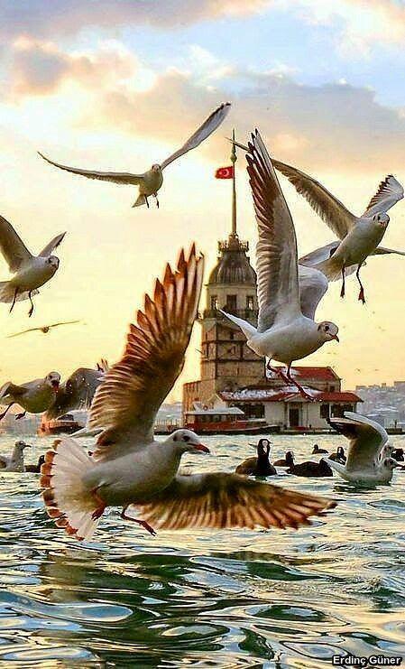 Kız Kulesi. Istanbul, Turkey