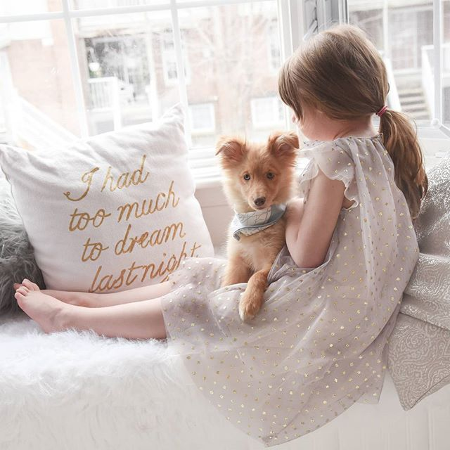 Best friends 💕🐶 loving Finleys new bandana from @binuhandmade #sheltie #sheltiepuppy #girlanddog