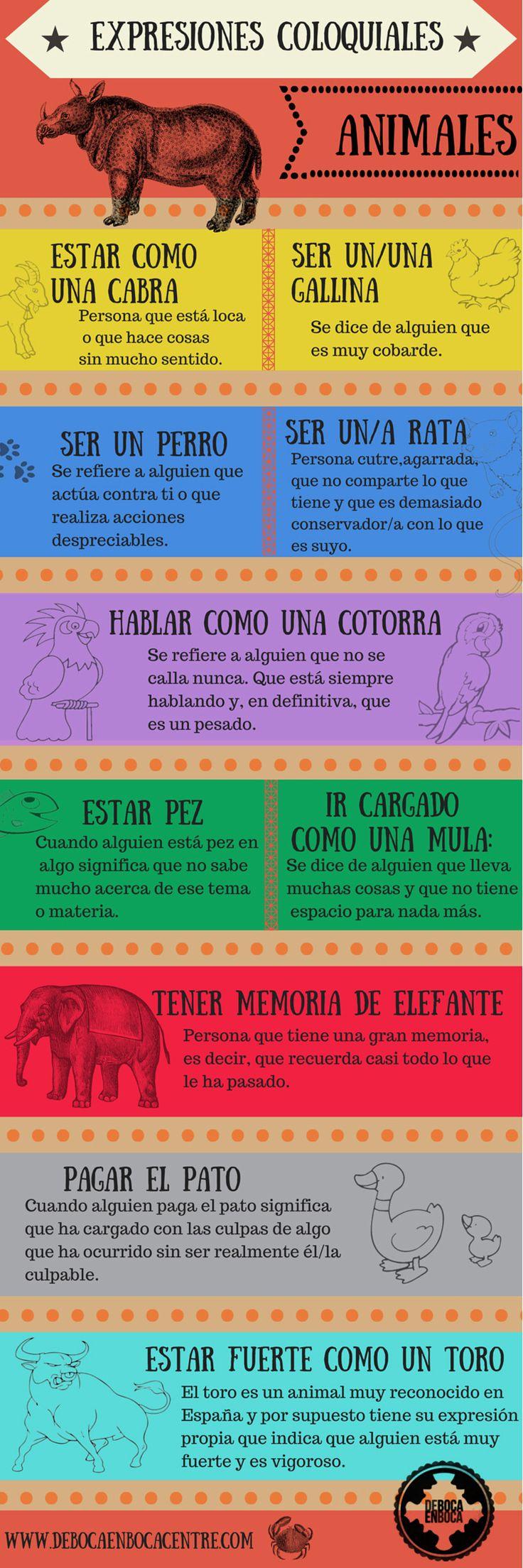 Expresiones coloquiales con animales