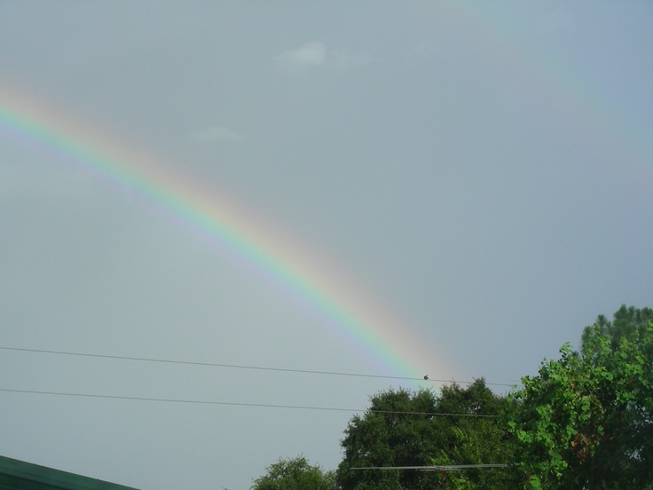 rainbow from my front yard