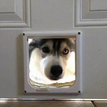 Im here.i can see you now