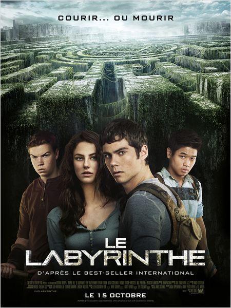 Quand Thomas reprend connaissance, il est pris au piège avec un groupe d'autres garçons dans un labyrinthe géant dont le plan est modifié chaque nuit. Il n'a plus aucun souvenir du monde extérieur, à part d'étranges rêves à propos d'une mystérieuse organisation appelée W.C.K.D. Bande-annonce : http://lc.cx/e7o