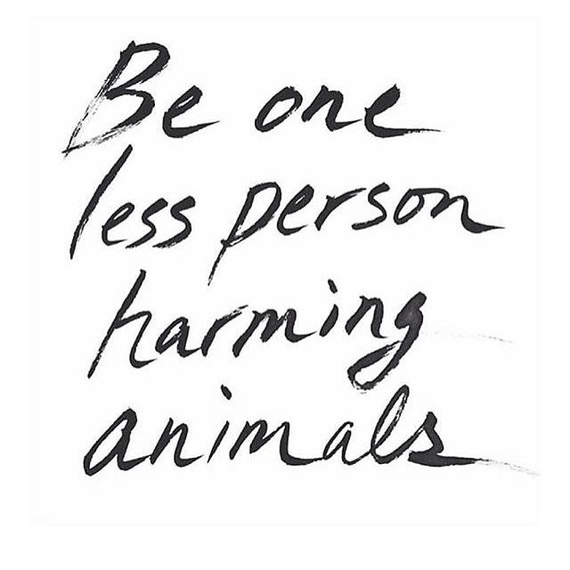 You are making a difference. Via @the_vegan_collective