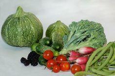 10 légumes pour le potager du débutant   Courgettes, haricots, radis, tomate : les incontournables   via autourdupotager.com
