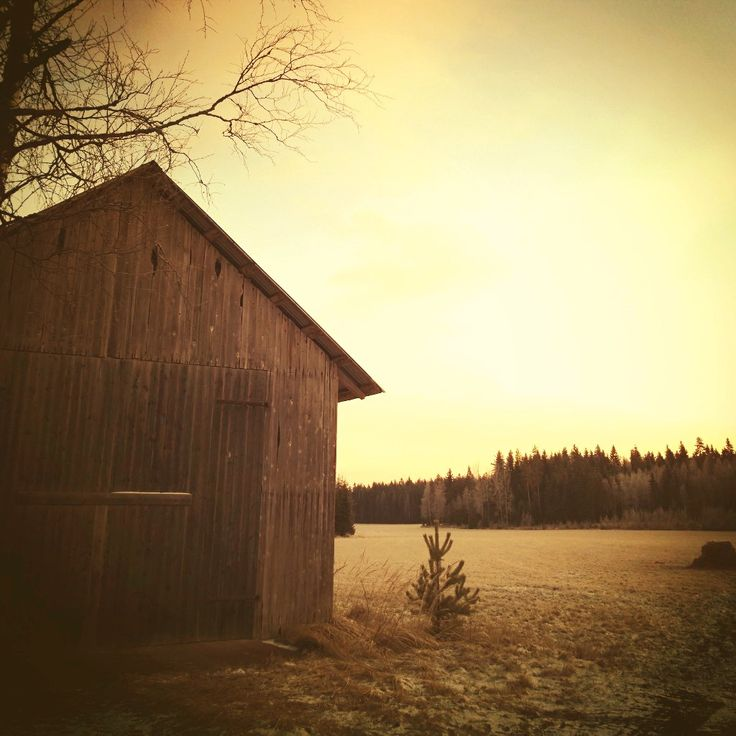 Finnish countryside