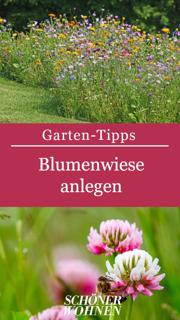 Anleitung zum Anlegen einer Blumenwiese. #Sommer #Garten #Terrasse #Anleitung …   – Garten mit Stil