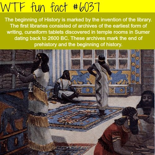 Funny Istory: 17 Best Ideas About History Fun Facts On Pinterest
