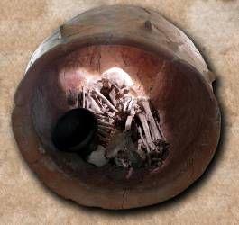 Urna funeraria hallada durante las intervenciones arqueológicas recientes en La Bastida (ASOME (C) ).