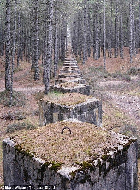 Concrete tank defences in the forests near Lossiemouth, Moray - photos capture man-made remnants of the Second World War that have become part of our coastal landscape