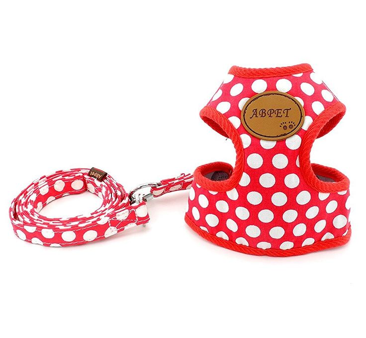 SMALLLEE_LUCKY_STORE New Soft Mesh Nylon Vest Pet Cat Small Medium Dog Harness Dog Leash Set Leads S M L * You can find more details by visiting the image link.