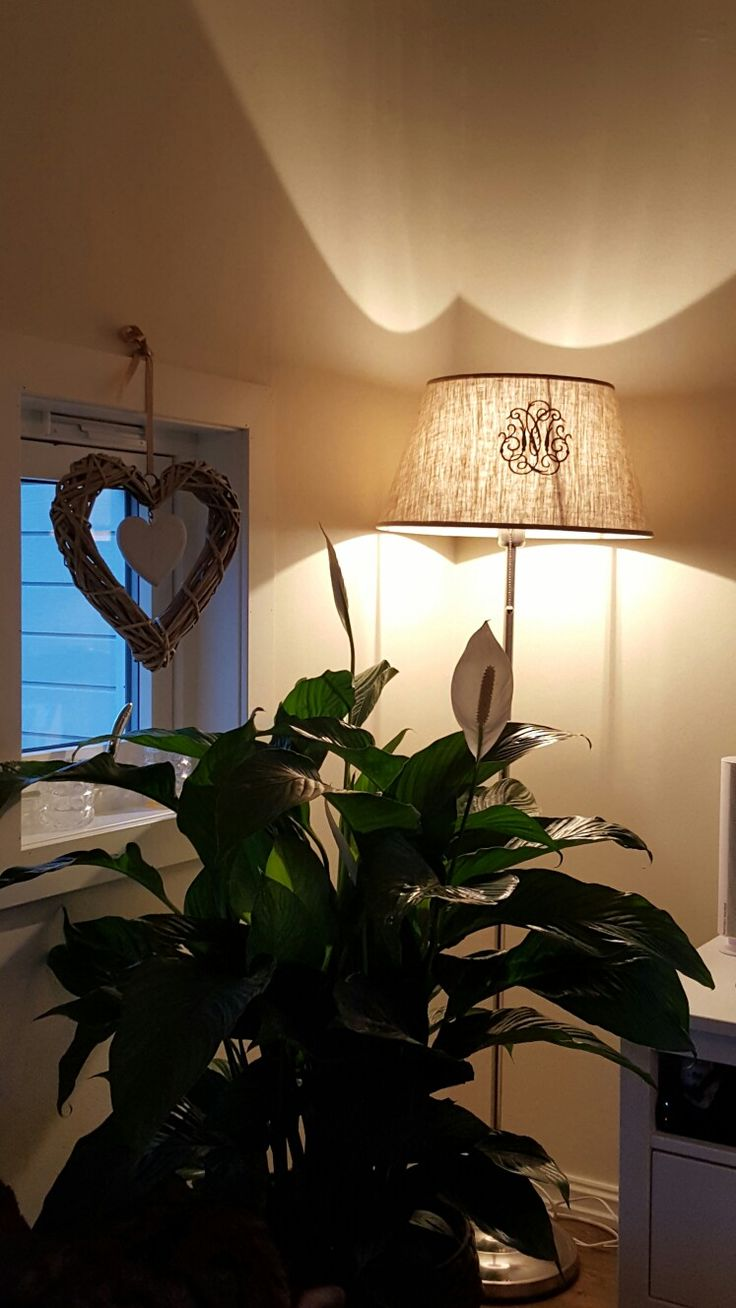 Ny lampeskjerm