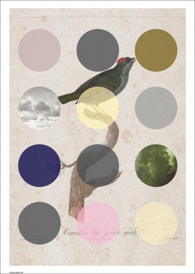 Bird, Dot. Poster - Konsttryck - TAVLOR & POSTERS