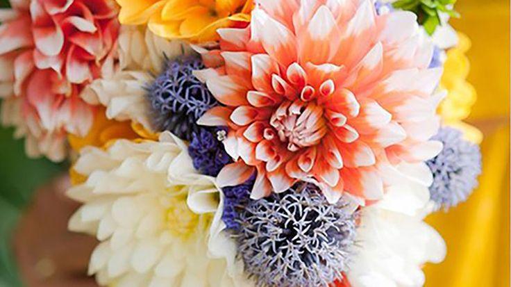 quelles fleurs pour ma d co de mariage en automne m6 d coration de mariage pinterest. Black Bedroom Furniture Sets. Home Design Ideas