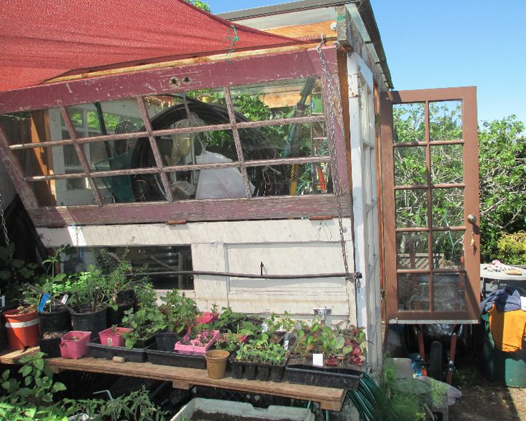 Urban agriculture and ecological design SF. #california #permaculture #urbanagriculture #freshfood #organic #eatlocal #sustainabledesign