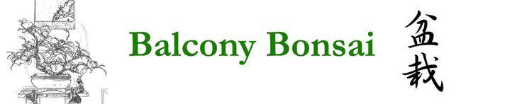 Balcony Bonsai