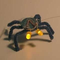 Two LED lights and a button cell battery, make your own Blinky Bug!