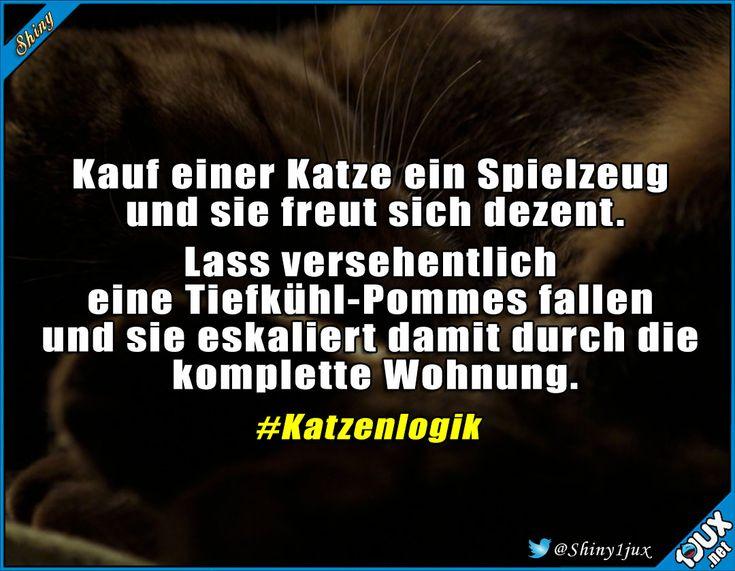 Und Geld spart man auch noch #Katzenliebe #Katze #Katzen #lustig #Spruch #Jodel #Humor