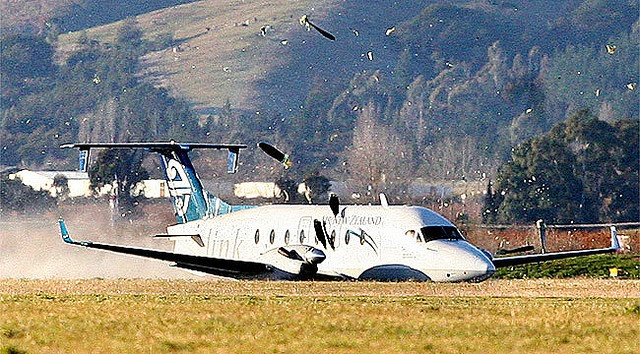 New Zealand Prop commuter plane - no landing gear landing by :: bad monkey ::, via Flickr