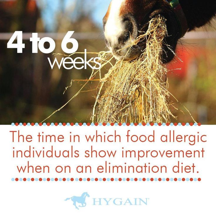 The only effective treatment for food allergies is avoidance of the offending allergen. Antihistamines and glucocorticoid therapy can be tried, but are not particularly effective. Providing horses with clean, dust free hay and a low intake vitamin mineral concentrate such as HYGAIN® BALANCED® or HYGAIN® SPORTHORSE® is the basis for the new feeding program – from there add calories from single ingredients that have not shown to elicit an allergic reaction in the horse such as HYGAIN® RBO®.