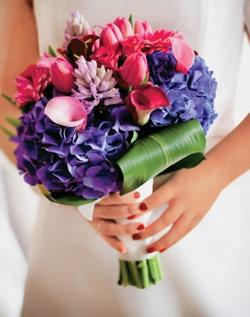 Love the purple hydrangeas