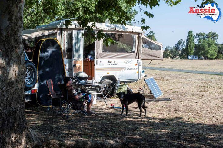 dog friendly free camping