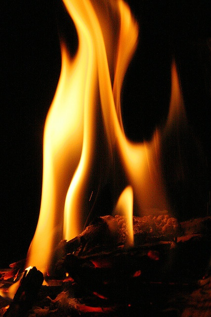 Fire by Fernando Felix, via Flickr