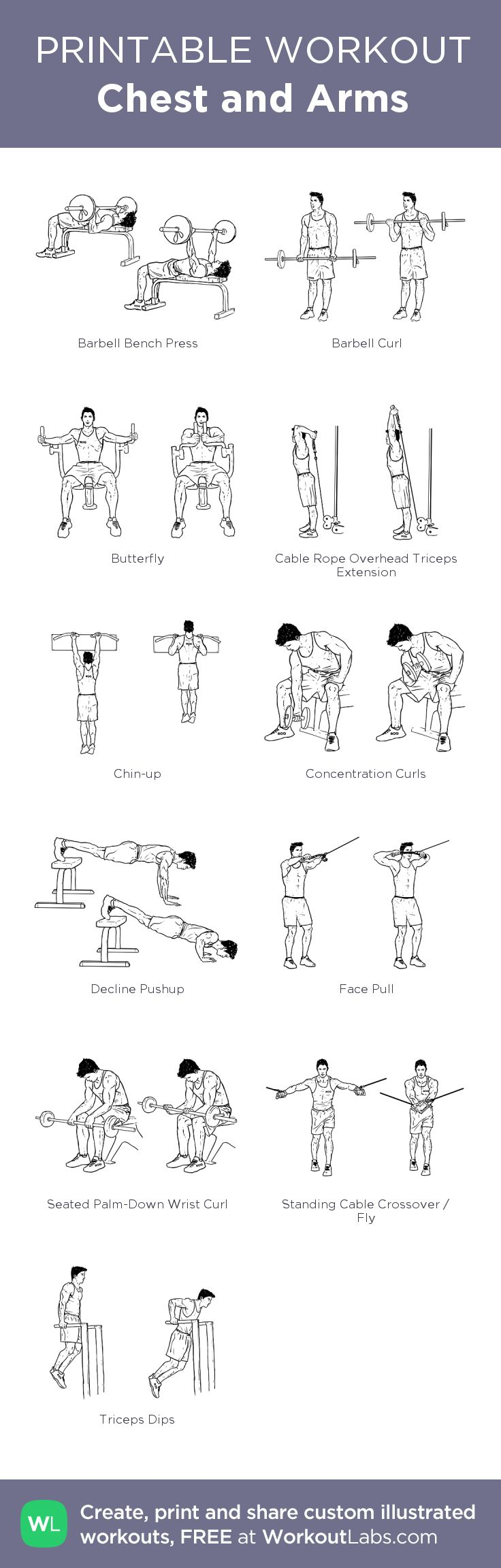 Chest and Arms: my custom printable workout by ...
