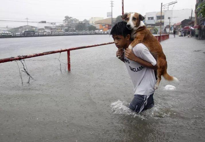 Un niño lleva a su perro a través de las aguas de inundación traídas por la lluvia del monzón en Manila, Filipinas. Foto de Reuters / Romeo Ranoco.