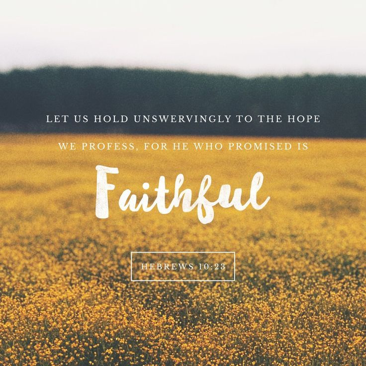 Let us hold fast the confession of our hope without wavering, for he who promised is faithful. Hebrews 10:23 ESV http://bible.com/59/heb.10.23.ESV