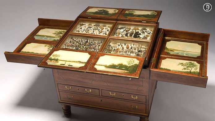 Macquarie Collector's Chest, ca. 1818    Inside this modest cedar chest is a riot of natural history specimens, artistically arranged and startlingly intact, collected in the Newcastle penal colony.   From the collection of the State Library of New South Wales