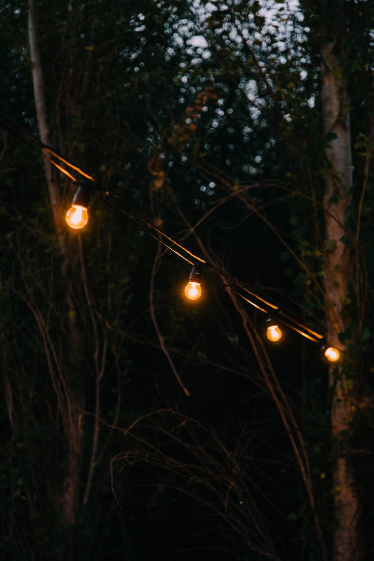 Festoon lighting...In love with...