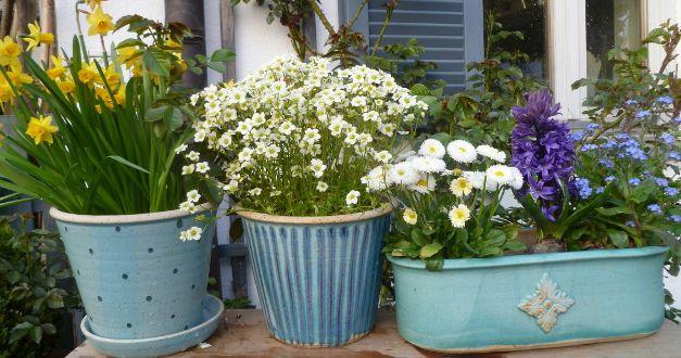 Große Auswahl an dekorativen, frostfesten Blumentöpfen aus Meisterhand. Meine Blumentöpfe sind vielfältig einsetzbar als Pflanztopf, Übertopf, Kräutertopf und Hängetopf