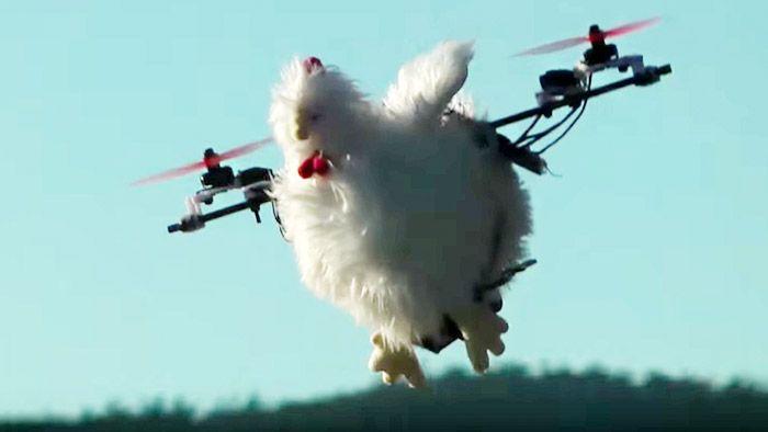Norové sestavili dron s tvarem slepice na roznášení vajíček