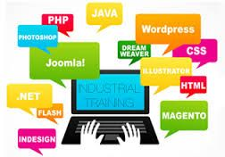 Our team of experts starts with the understanding of your business, identify the scope of work you want and exactly study the different aspects and will build a perfect product that complies and delivers the right results according to your expectation of your web site maintenance.
