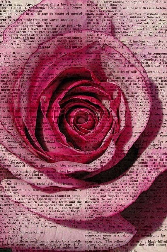 Rose printed on vintage dictionary page.